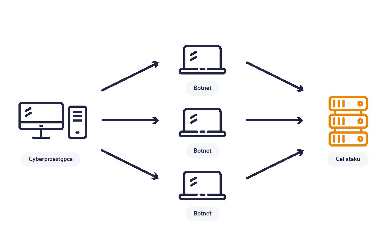 Infografika przedstawiająca schemat ataku DDoS